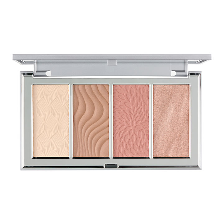 4-in-1 Skin Perfecting Face Palette Fair Light